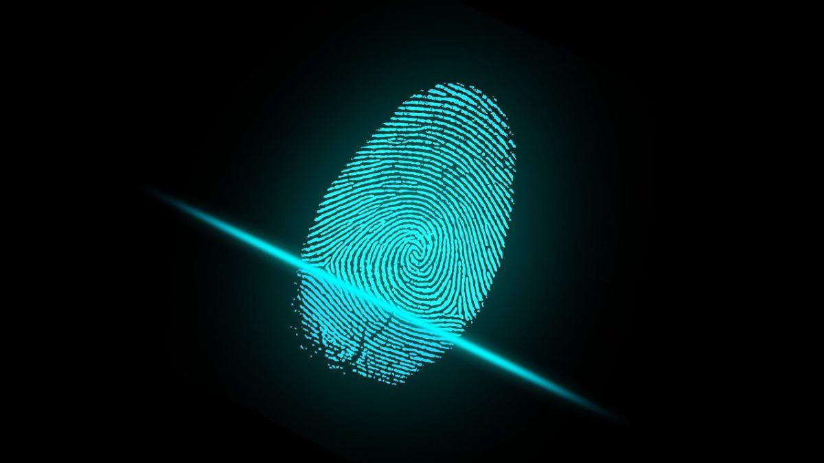 biometrics security system